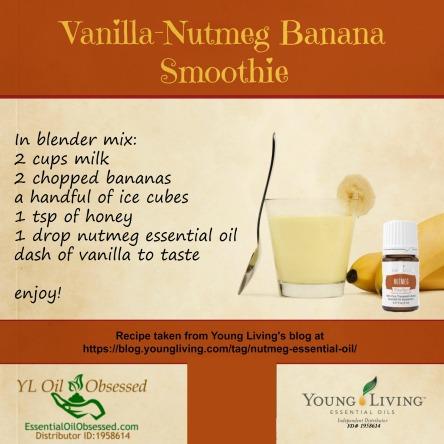vanilla-nutmeg-banana-smoothie-2