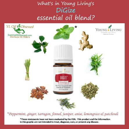 digize vitality ingredients