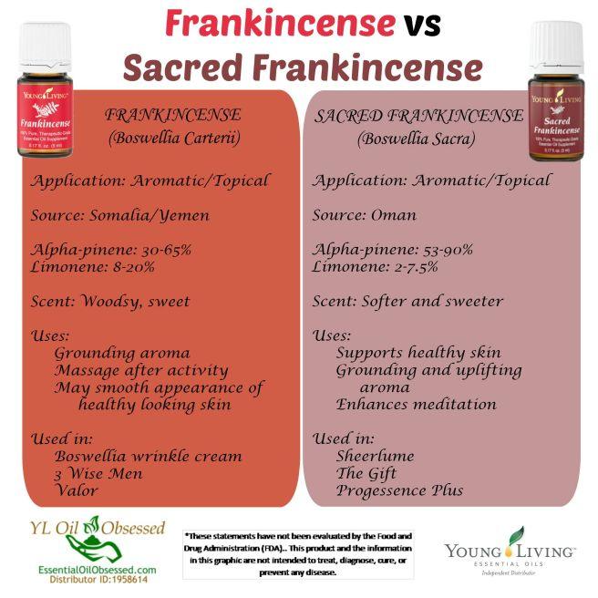 frank vs sacred frank