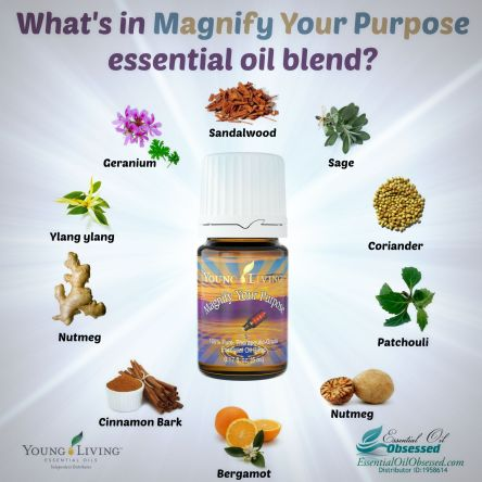 Magnify your purpose ingredients