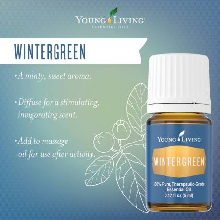 Wintergreen Essential Oil Essential Oil Obsessed