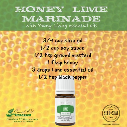 honey lime marinade