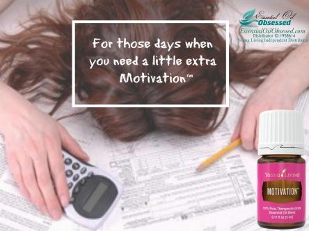motivation taxes