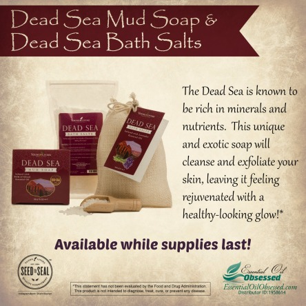 dead sea mud soap and bath salt