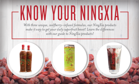 know your Ningxia