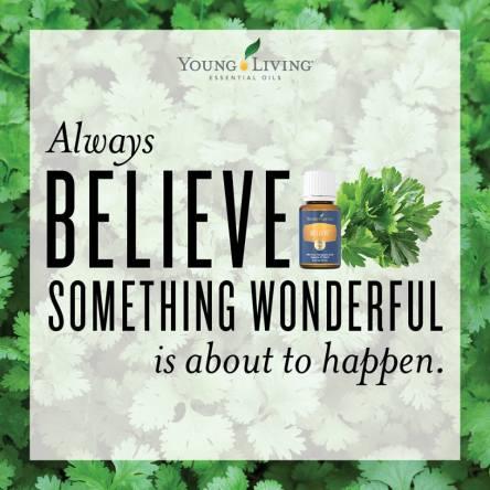 Believe microcompliant