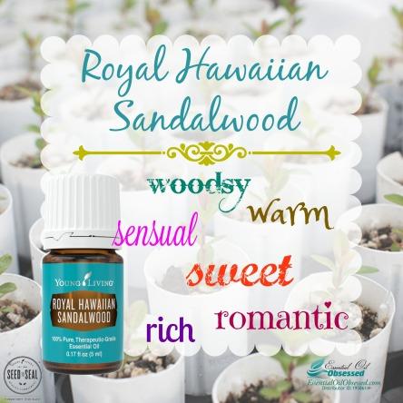 rh-sandalwood