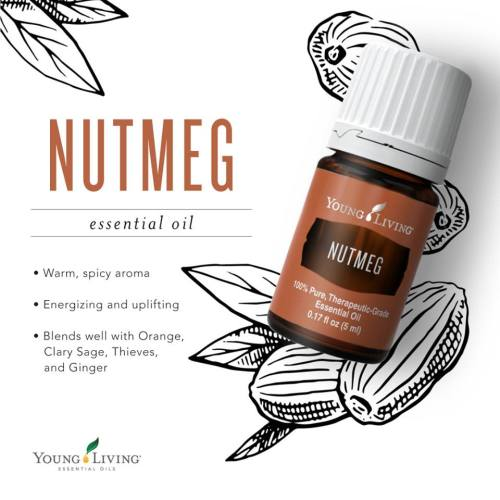nutmeg | Essential Oil Obsessed
