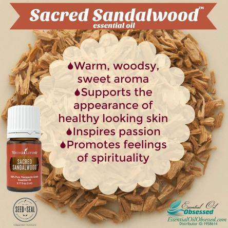 sacred-sandalwood22