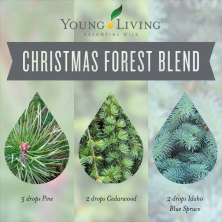 christmas forest blend