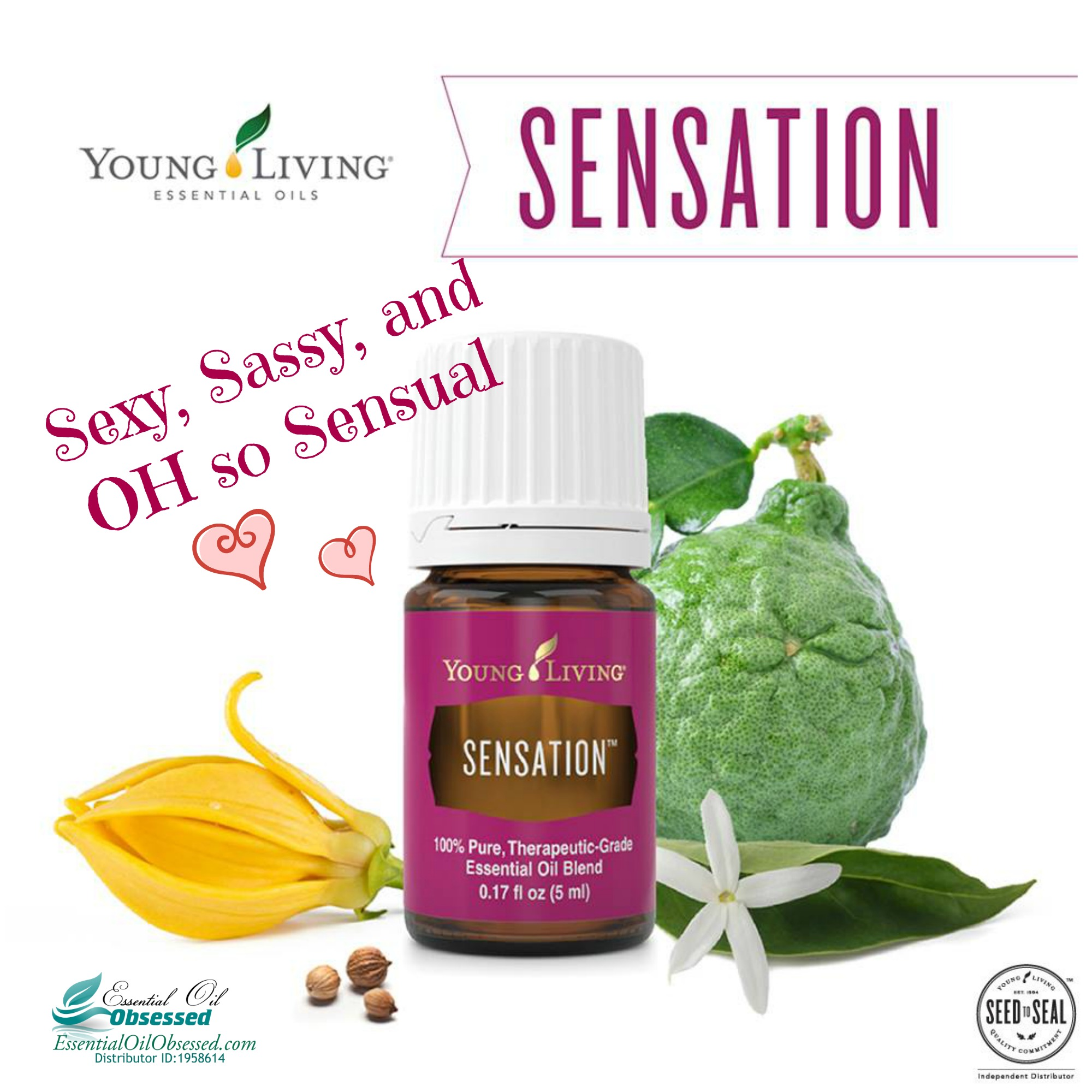 Sensation™ Essential Oil blend