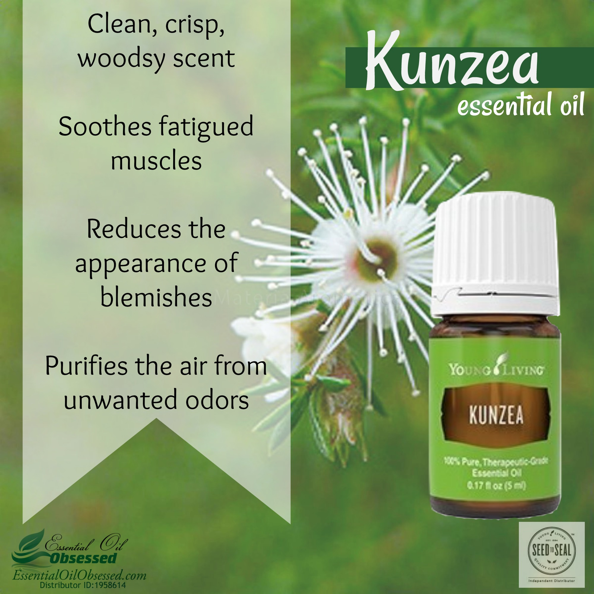 Kunzea essential oil from Young Living