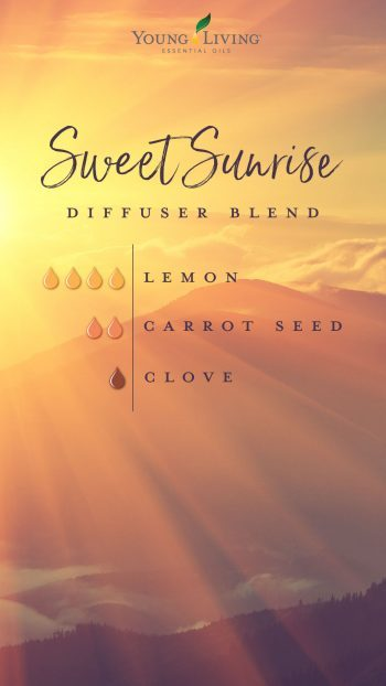 sweet sunrise lemon carrot clove